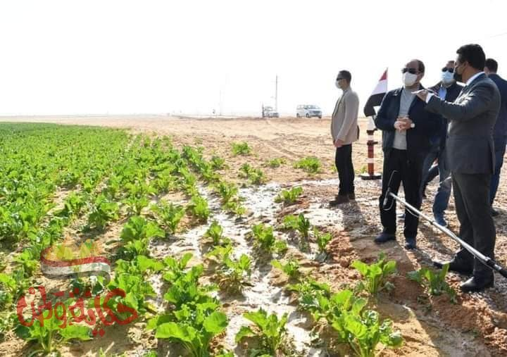 الرئيس السيسى : مشروع مستقبل مصر استراتيجية لتعظيم فرص الإنتاج الزراعى