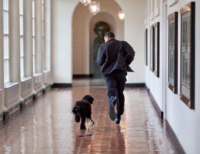 أسرة أوباما حزينة لفراق كلبها ( بو )