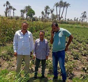 زراعة أبشواى :متابعة أعمال حماية الأراضي بأبشواي اليوم