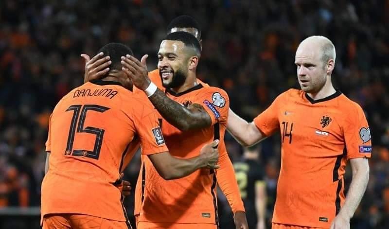 هولندا تقسو